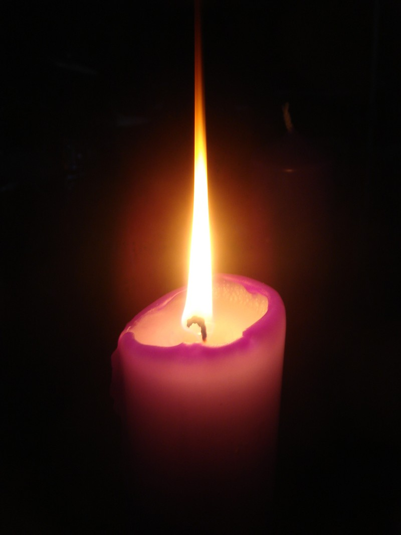 116 of 2227 results for Advent Candles  amazoncom